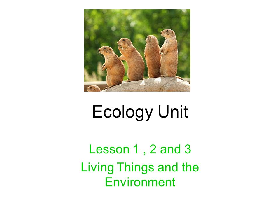 living things and the environment worksheet Worksheets for Kids – Living Environment Worksheets