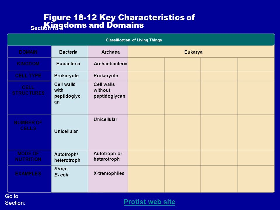 Review the Characteristics of Living Things - ppt video ...