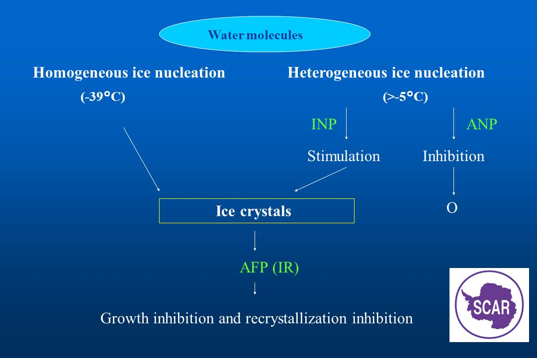 Homogeneous ice nucleation Heterogeneous ice nucleation