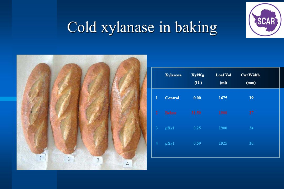Cold xylanase in baking