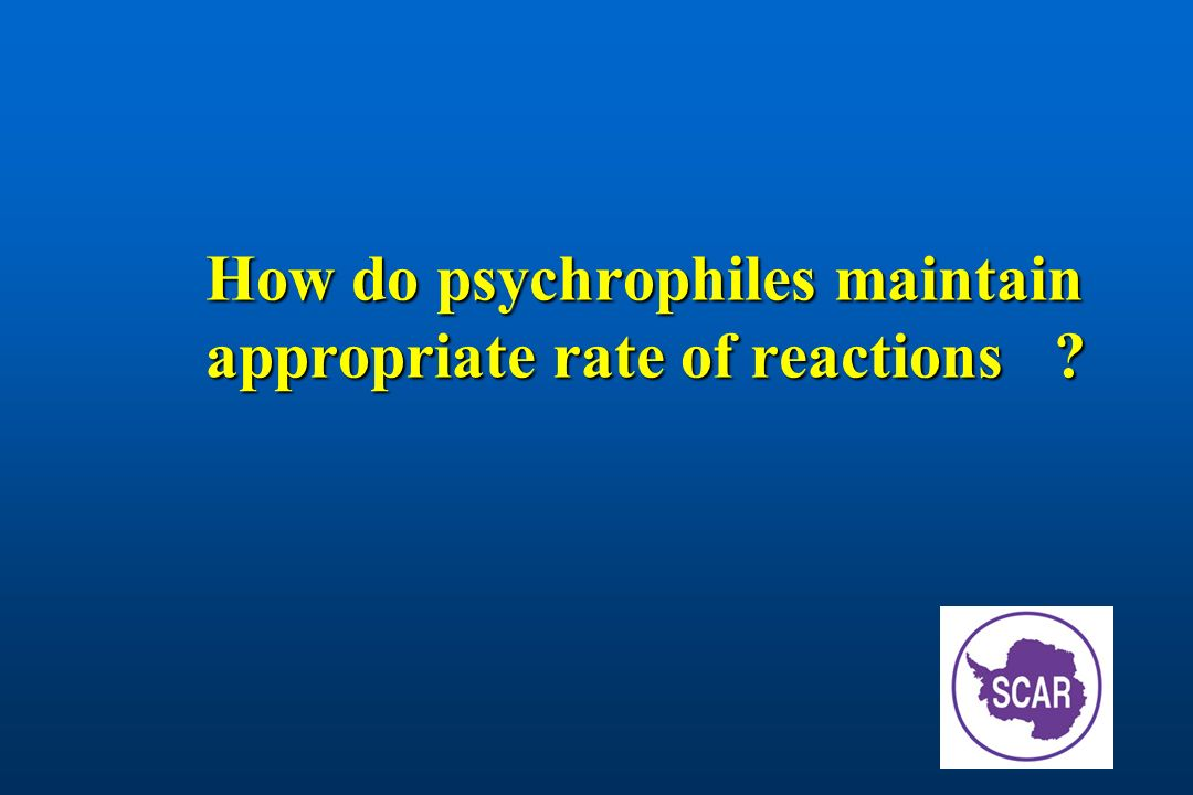 How do psychrophiles maintain appropriate rate of reactions