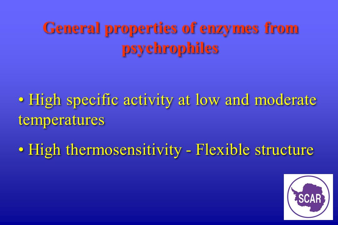 General properties of enzymes from psychrophiles