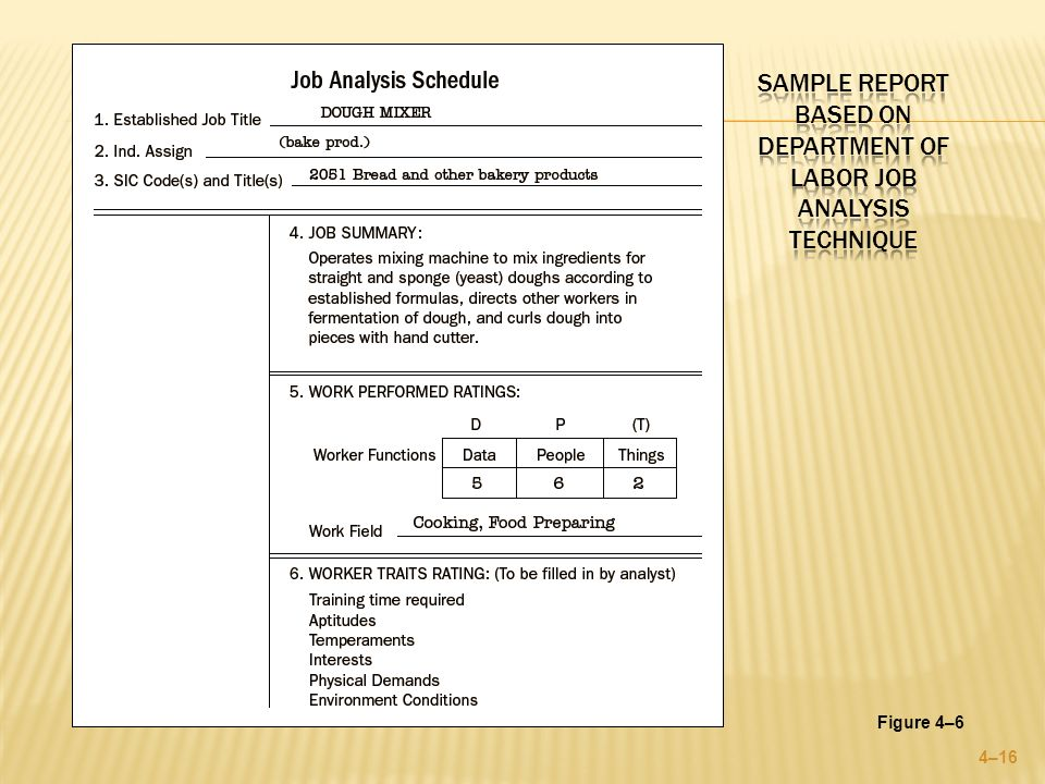 Sample Job Analysis - 6+ Examples In Word, Pdfjob Analysis Report