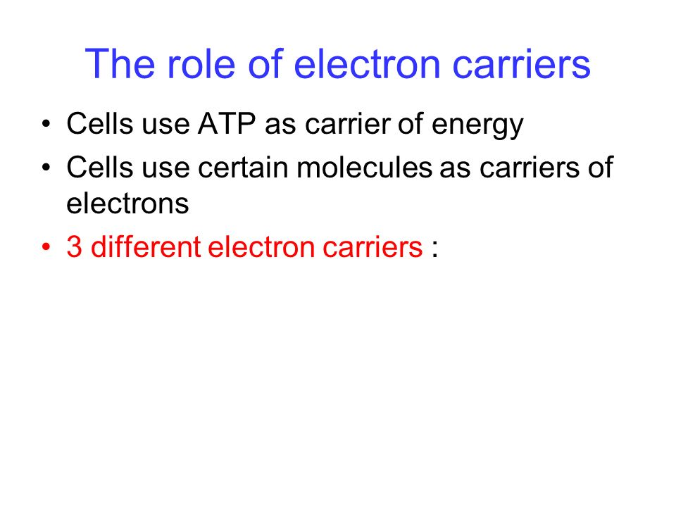 The role of electron carriers