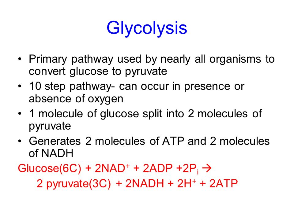 Glycolysis Primary pathway used by nearly all organisms to convert glucose to pyruvate. 10 step pathway- can occur in presence or absence of oxygen.