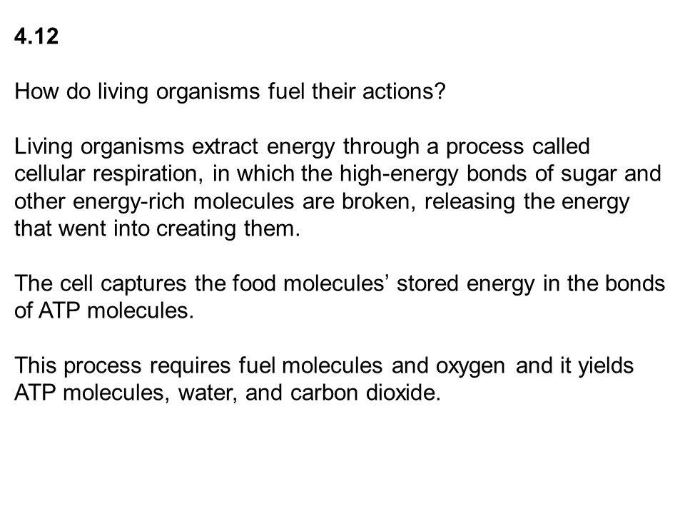 What Is Life? A Guide To Biology © 2012 W. H. Freeman and Company ...