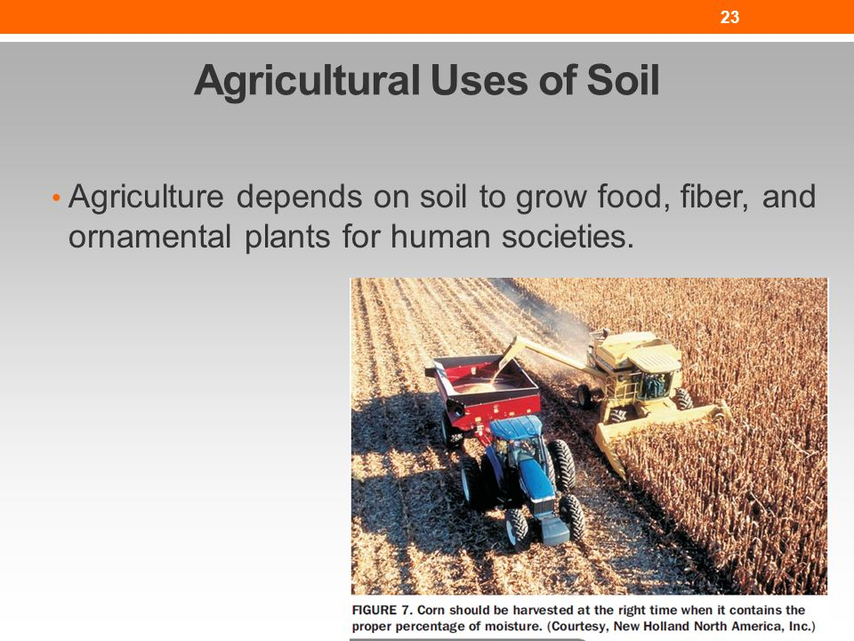 The nature of soil lesson nres b ppt video online download for Soil and its uses