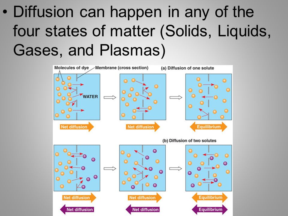 the four states of matter Explain to the students that there are four states of matter solid, liquid, gas, and plasma tell them that a fifth state of matter, bose.