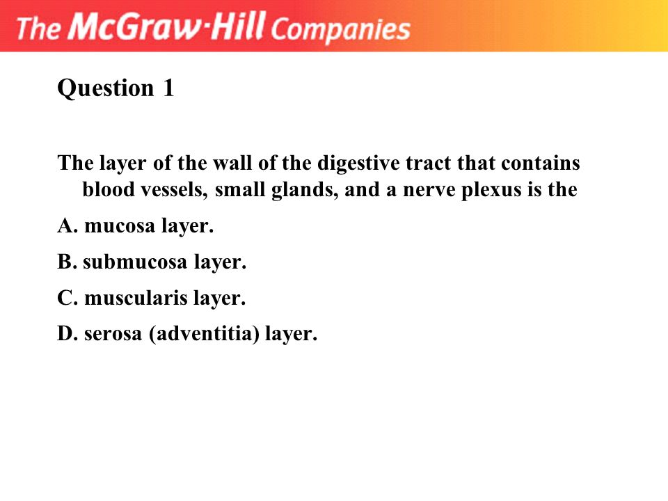 nerve questions