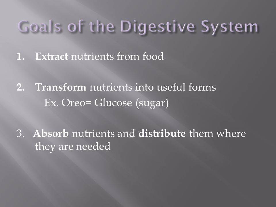 Goals of the Digestive System