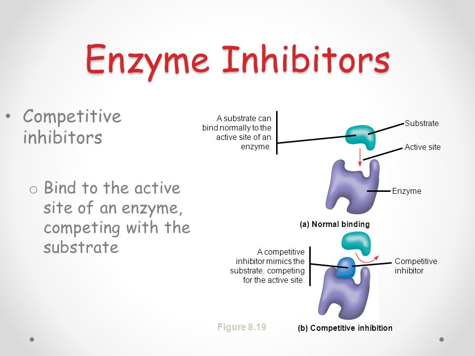 (b) Competitive inhibition