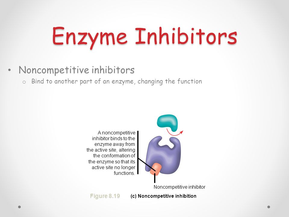 (c) Noncompetitive inhibition
