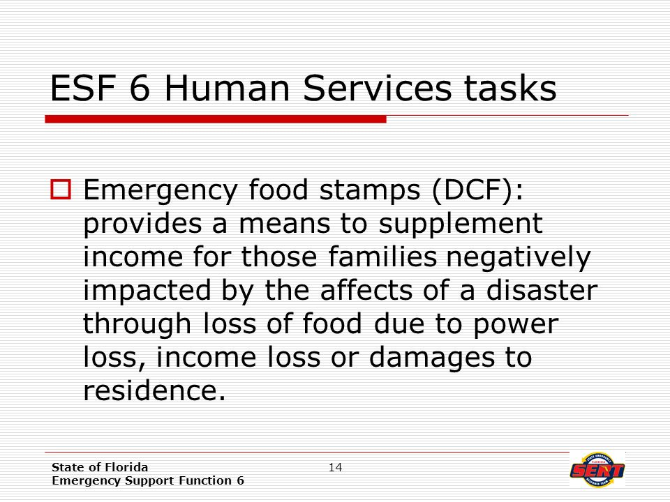 Emergency Food Stamps For Florida