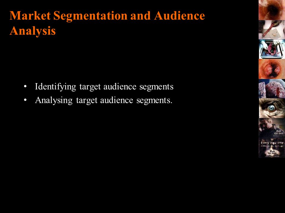 Market Segmentation and Audience Analysis
