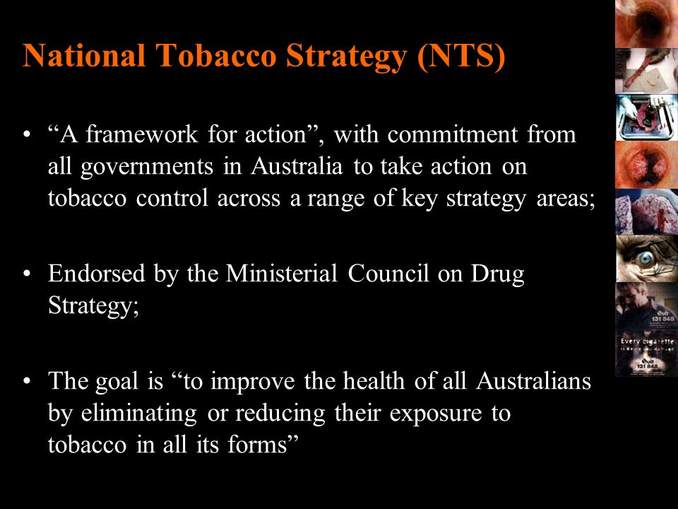 National Tobacco Strategy (NTS)
