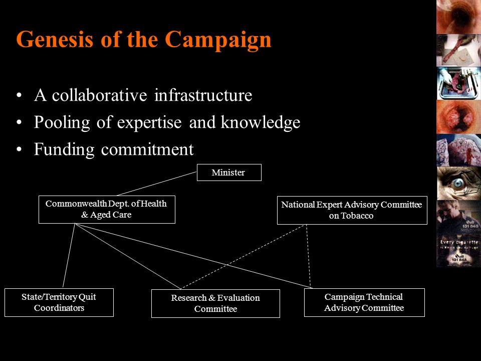 Genesis of the Campaign