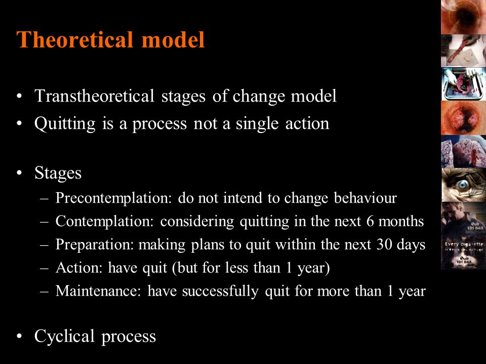 Theoretical model Transtheoretical stages of change model
