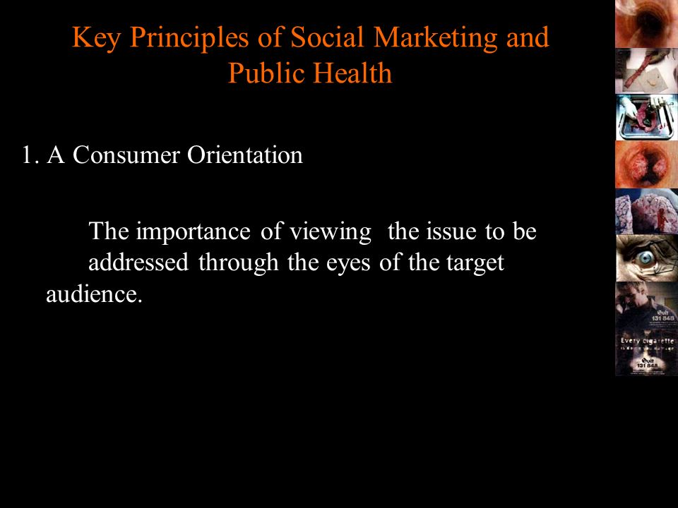Key Principles of Social Marketing and Public Health