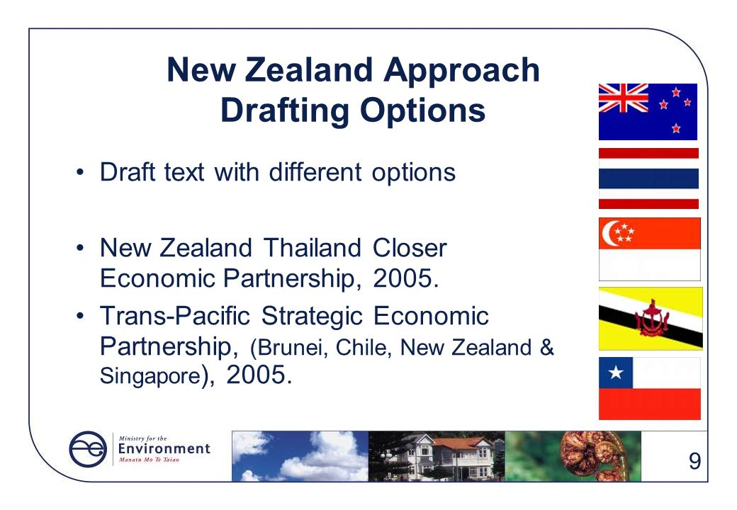 New Zealand Approach Drafting Options