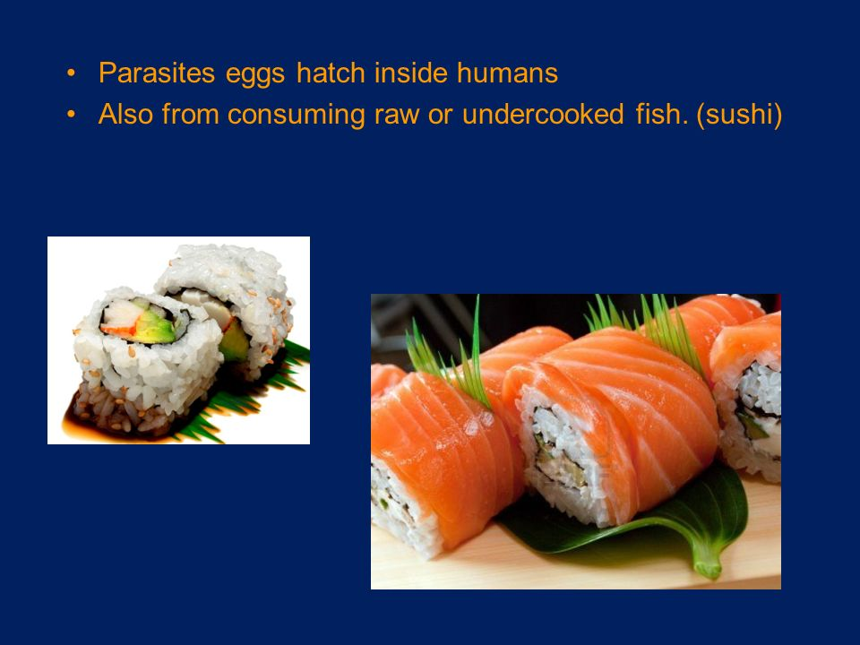 Foodborne disease cuatro ppt video online download for Raw fish parasites