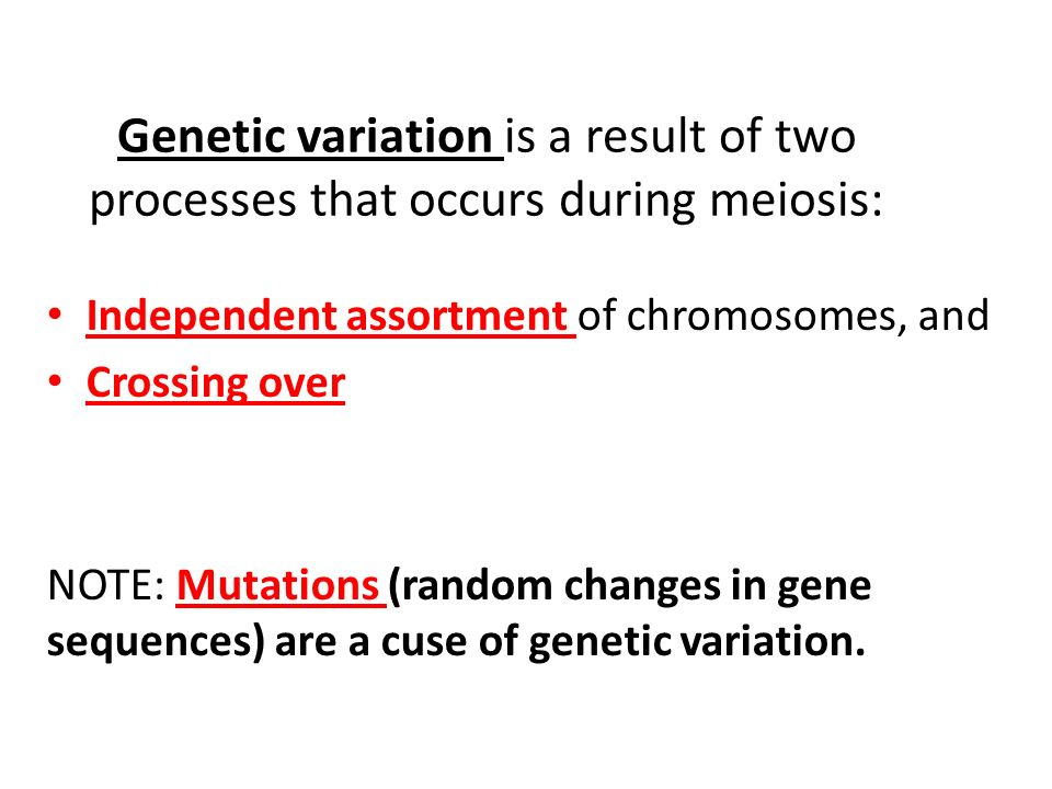 Genetic variation is a result of two processes that occurs during meiosis: