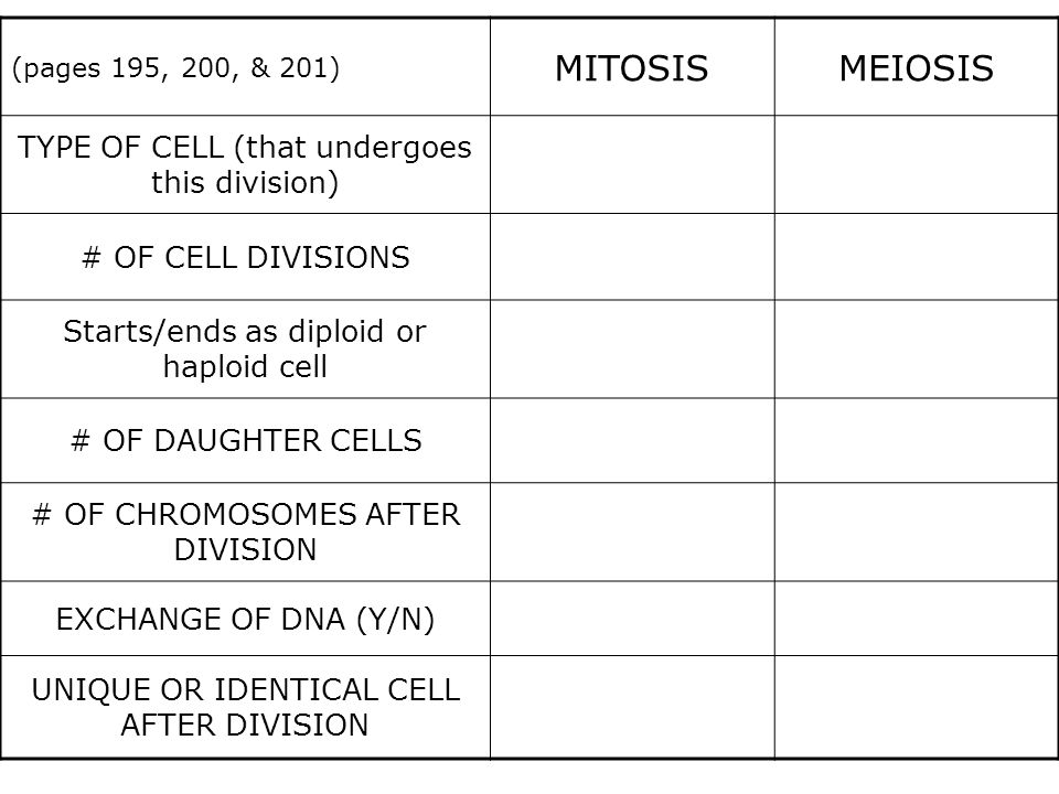 MITOSIS MEIOSIS TYPE OF CELL (that undergoes this division)
