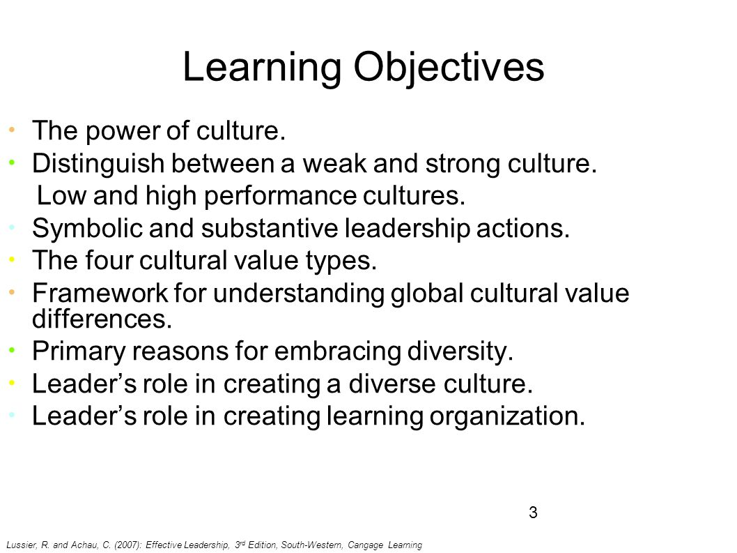 cultural differences of effective leadership Leadership provide a foundation for developing leader effectiveness in a global  and  leadership styles and actions differ across cultural and organizational.