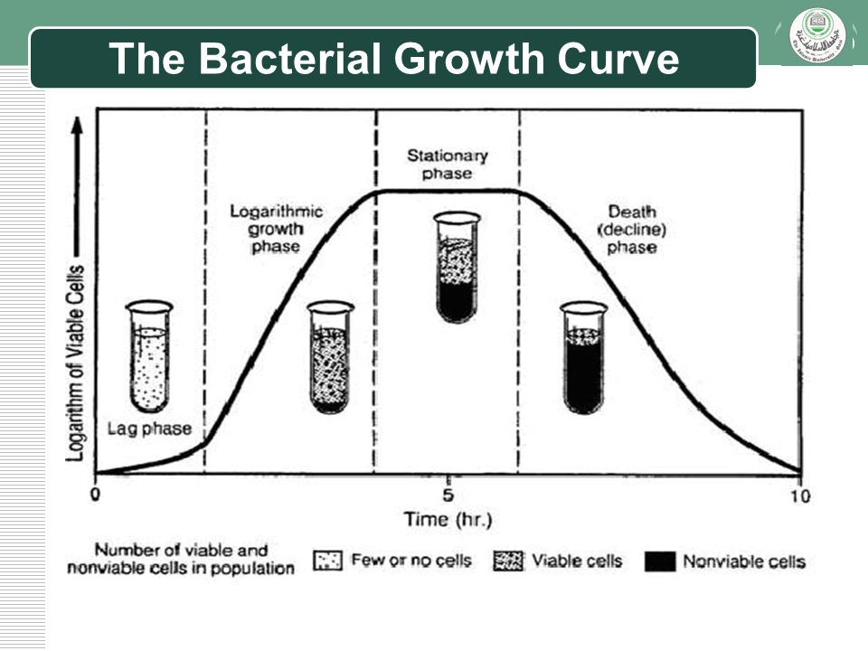 bacterial growth curve Bacterial growth curve bacteria, like all living organisms, grow the time it takes for a population of bacteria to double in number is called the growth ratethe doubling time is a fixed characteristic of each type of bacteria, and it can be used for identification.