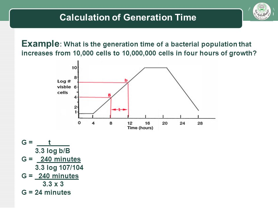 making of a bacterial growth curve in order to calculate generation times among bacteria