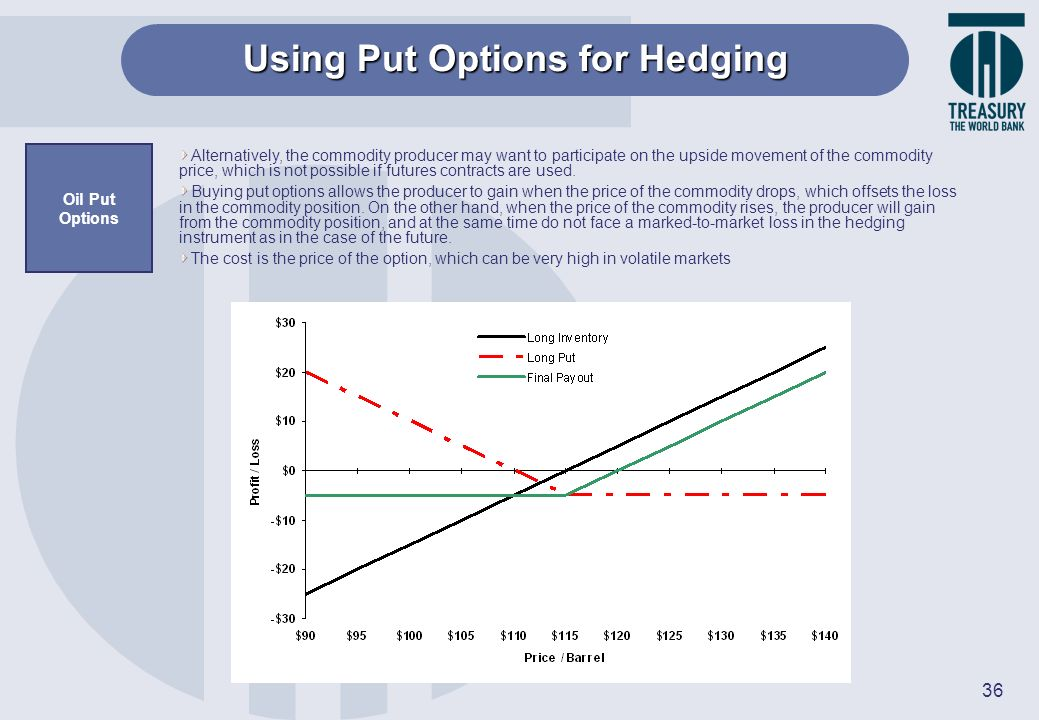 Using Put Options for Hedging