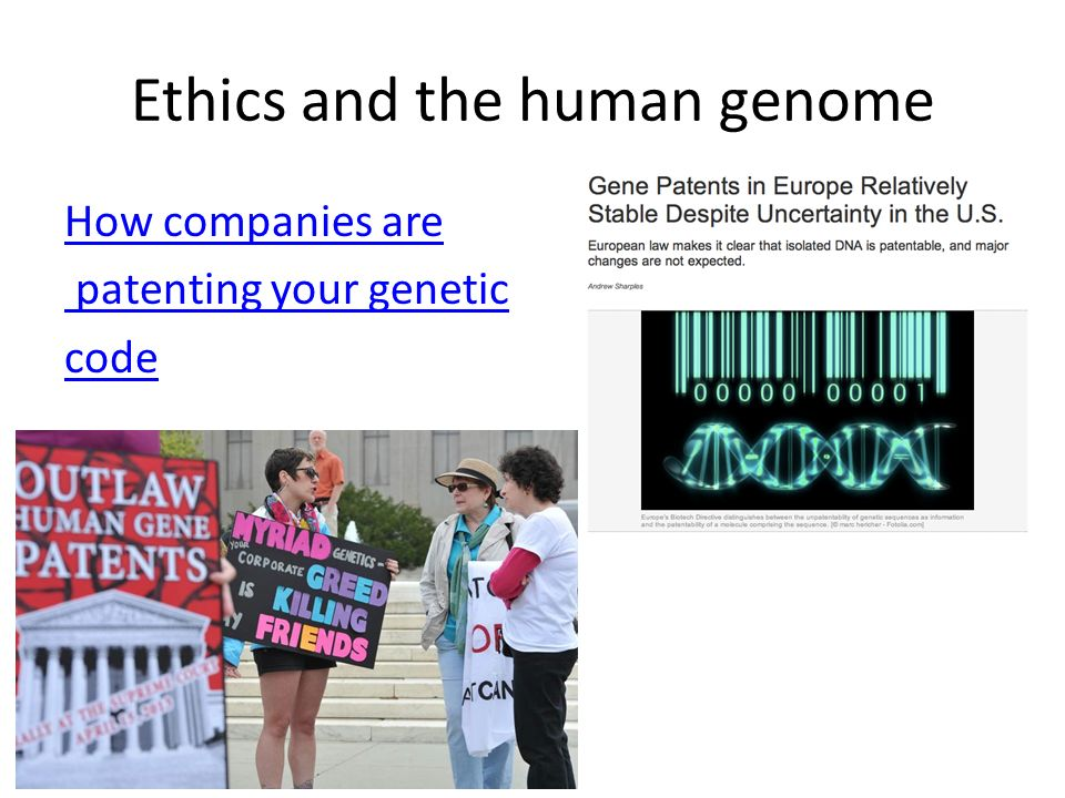 Essay/Term paper: Morality and the human genome project