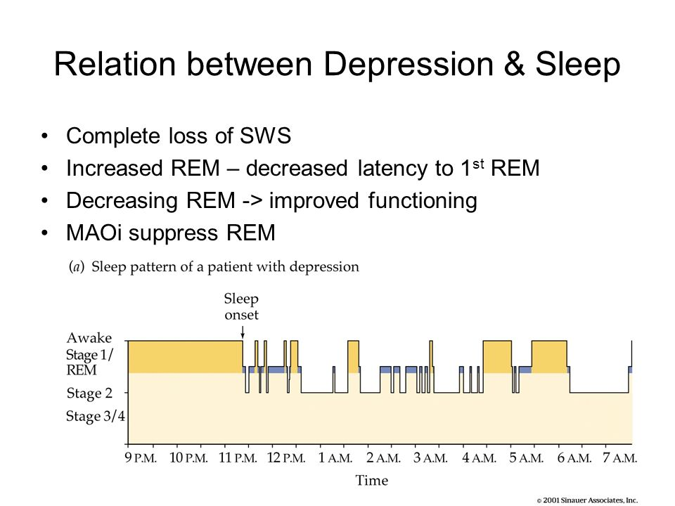 rem sleep research papers