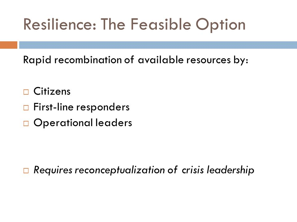 Resilience: The Feasible Option