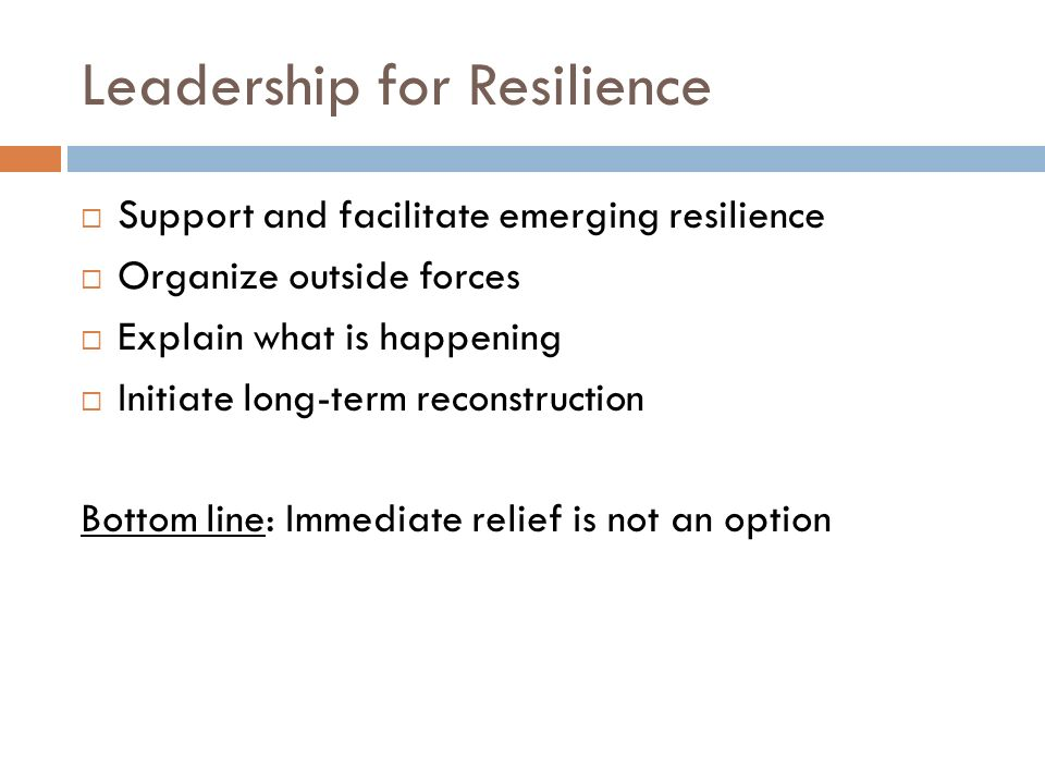 Leadership for Resilience