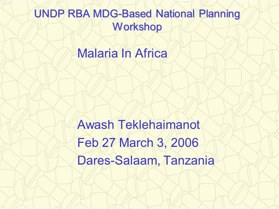 UNDP RBA MDG-Based National Planning Workshop