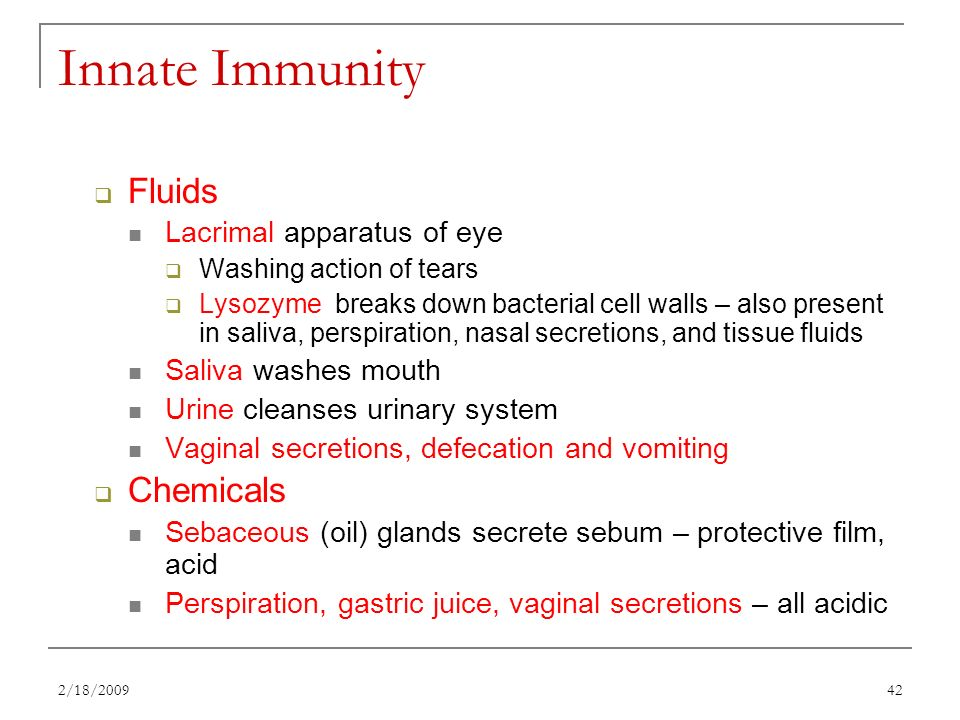 Chapter 22 The Lymphatic System And Immunity Ppt Download