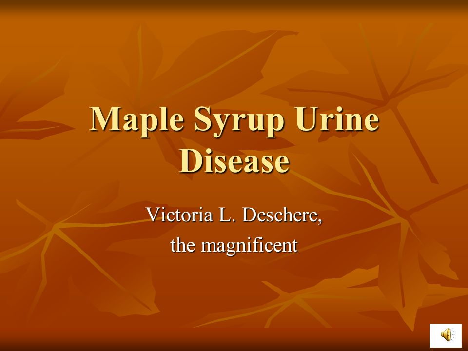 Maple syrup urine disese sex linked