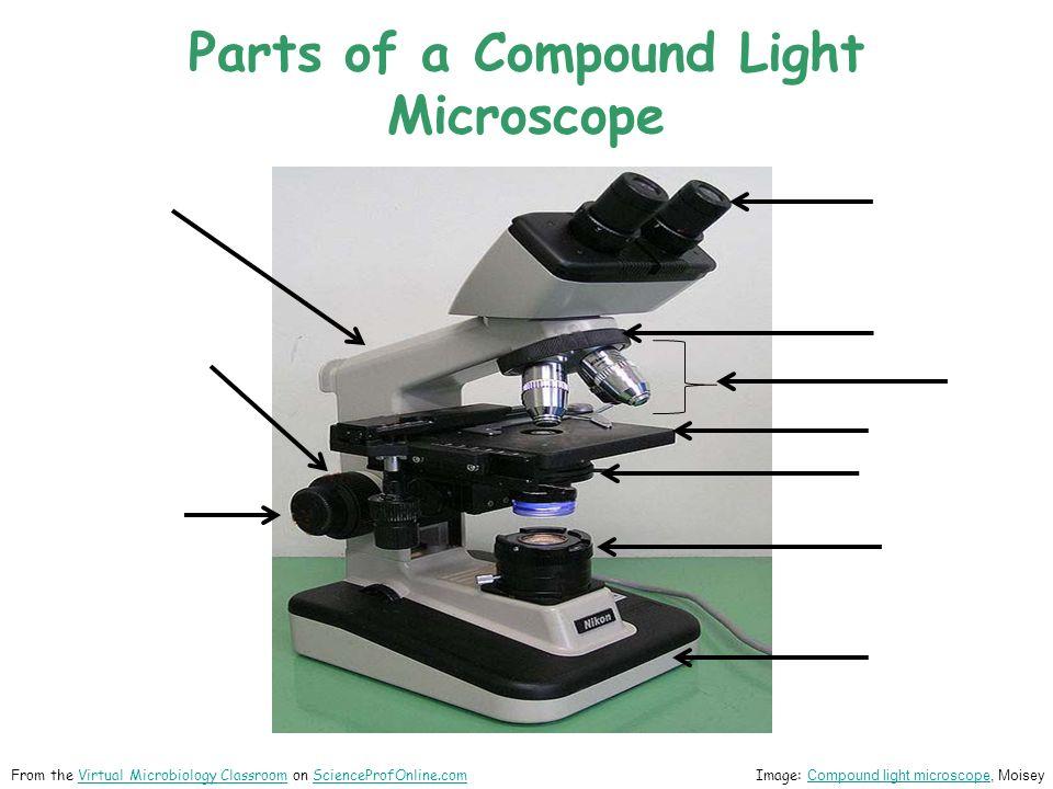 microscope labeling