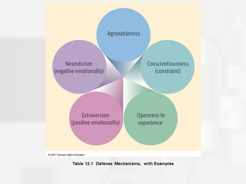 a response to the assessment on extraversion agreeableness conscientiousness neuroticism and opennes