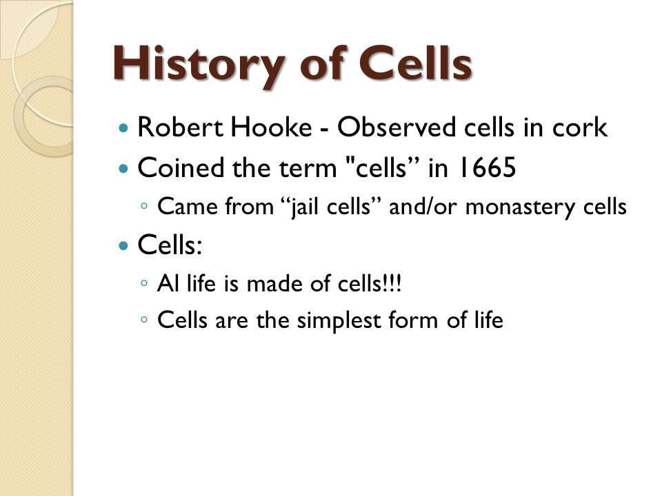 Chapter 6: A Tour of the Cell - ppt video online download