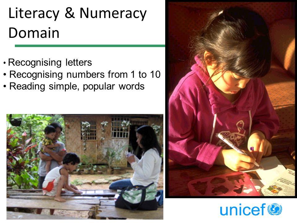 Literacy & Numeracy Domain