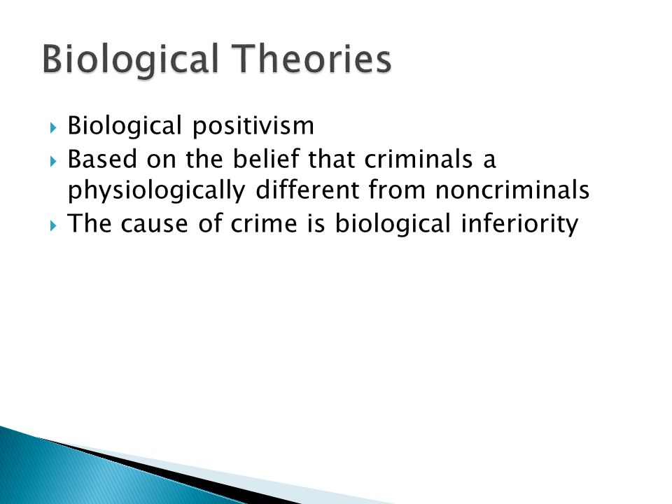biological positivism theory of crime Criminal behavior result of genetic/ environmental interactions consider figure  31 introducing biological positivist theories of crime as you read this chapter,.