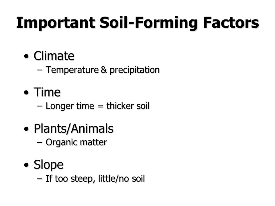 Weathering and erosion course website ppt video for Soil forming factors