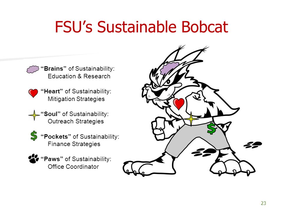 FSU's Sustainable Bobcat