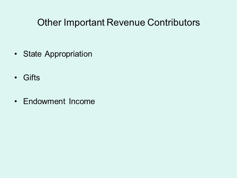 Other Important Revenue Contributors