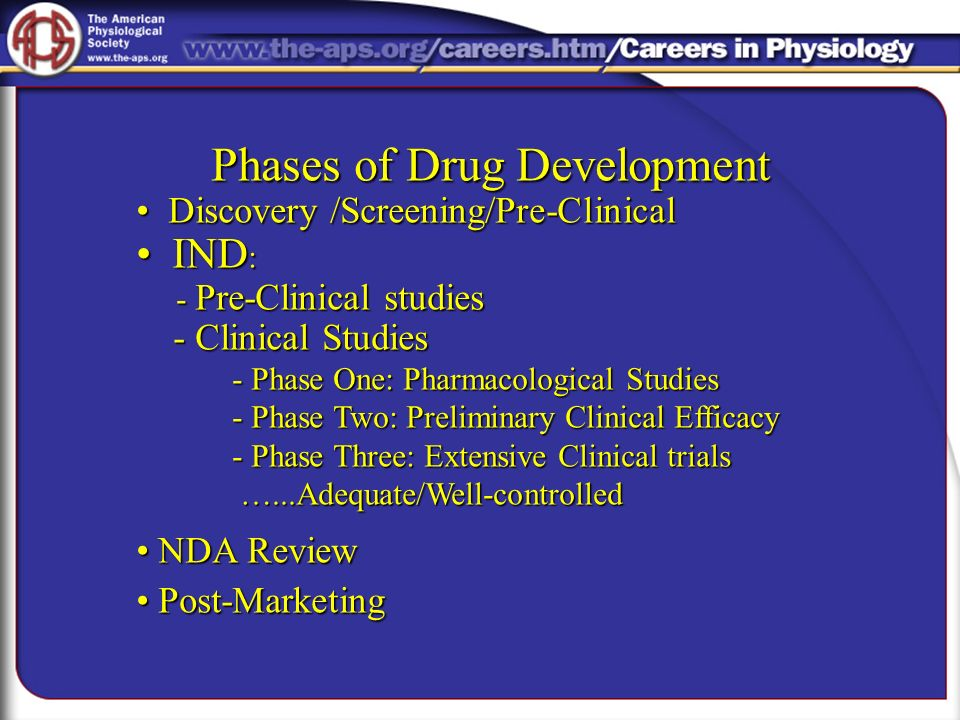 Phases of Drug Development
