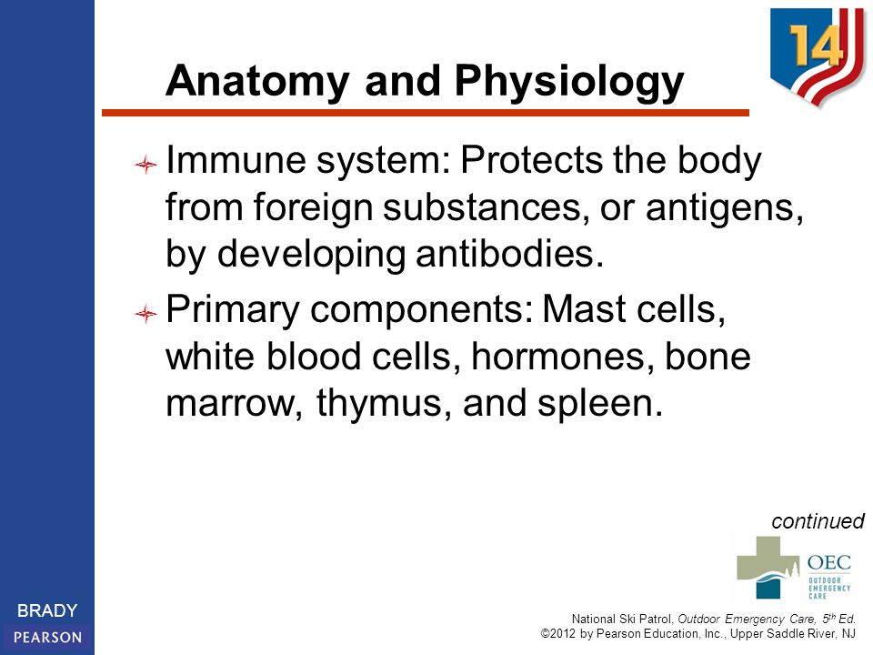 a description of an allergy as an abnormal reaction to ordinarily harmless substance or substances What are the symptoms of having an allergic reaction to foods an allergy is an abnormal reaction to an ordinarily harmless substance called an allergen this condition is frequently associated with allergies, and substances to which a person is sensitive may aggravate it.