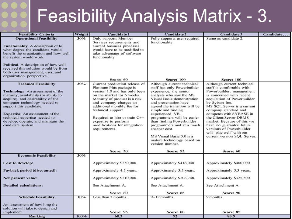 Feasibility Study Outline - sjsu.edu
