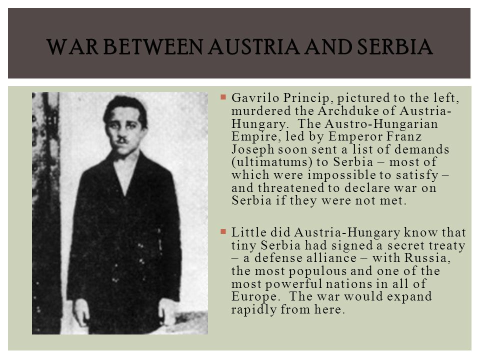 an analysis of the austro hungarian ultimatum to serbia What was unreasonable about austria's ultimatum to the austrian ultimatum to serbia being the most insolent might be communicated to the austro-hungarian.
