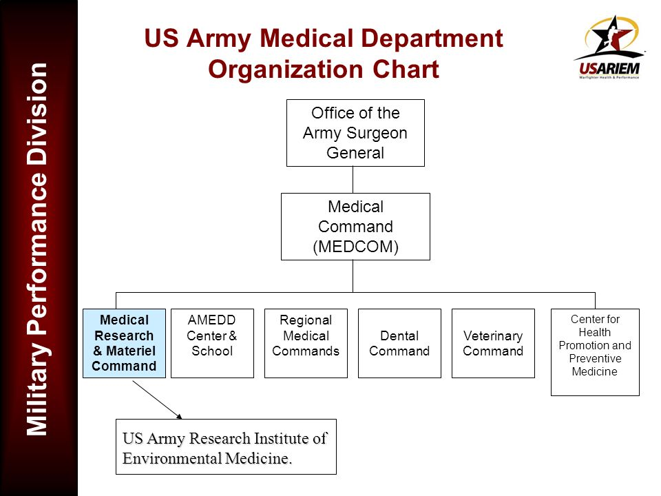 US Army Medical Department Organization Chart